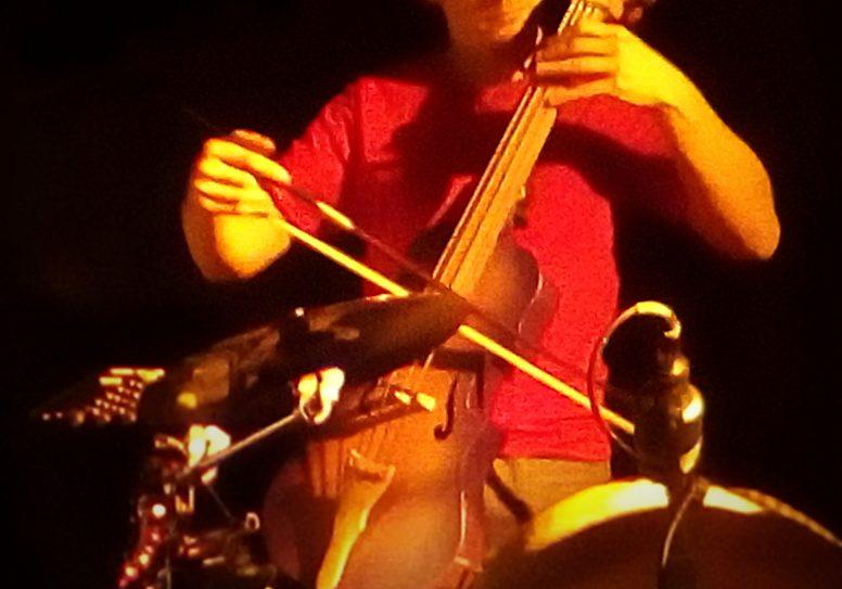 bal folk EtenSèl première sortie de l'eden bass par Philippe Berne, luthier
